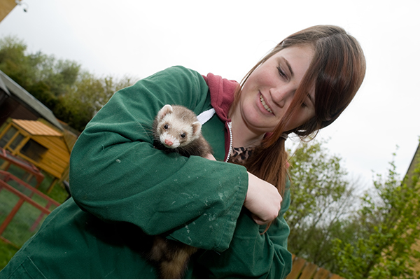 a student holding a ferret
