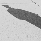 Shadow of graduation