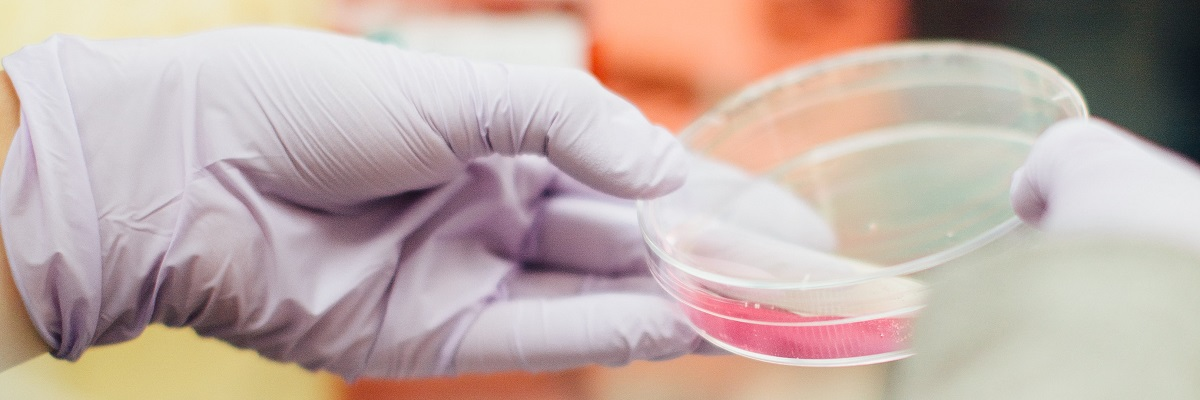 a person with gloves on holding a petri dish with chemical inside